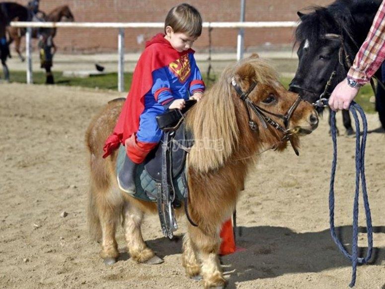 Pequeno super man sobre su pony