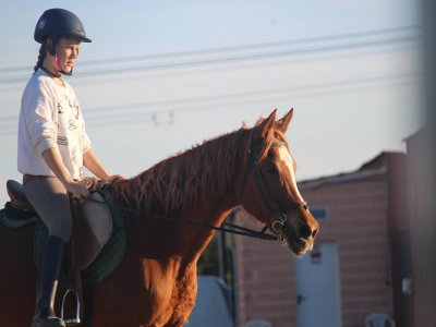 Riding class intermediate level S.S. Reyes 1 h