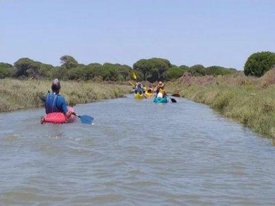 Ruta en piragua por Marisma del Odiel en Huelva