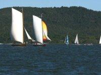 在海上的帆船赛