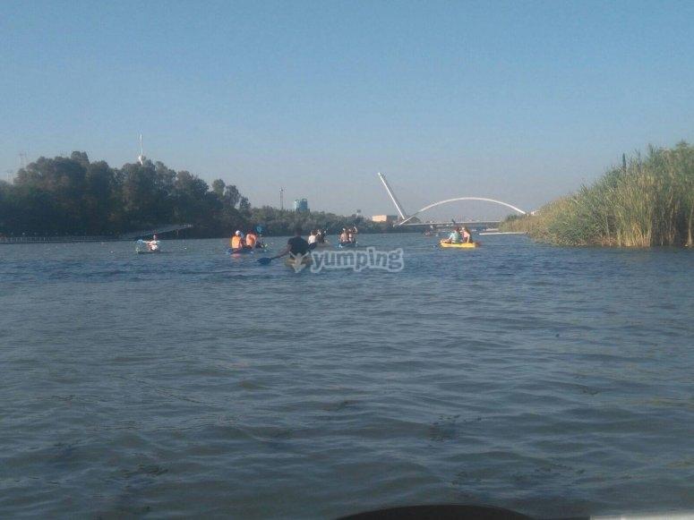 Remando en las canoas por el Guadalquivir