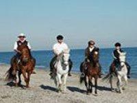 Cabalga por playas vírgenes