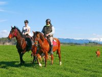 Paseo a caballo con amigos