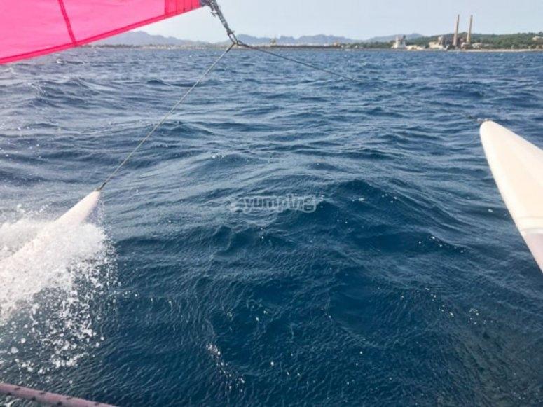 Catamarán navegando por Alcudia