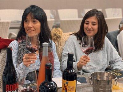 品尝优质葡萄酒并参观CasasIbáñez酒庄