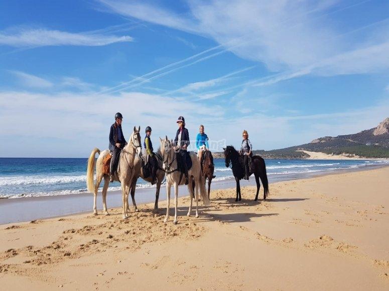 En la orilla del mar sobre los caballos
