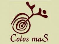 Cotosmas