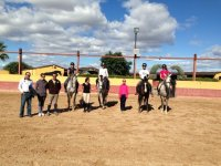 Equestrian classes on the track