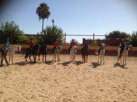 Pista de equitacion de arena