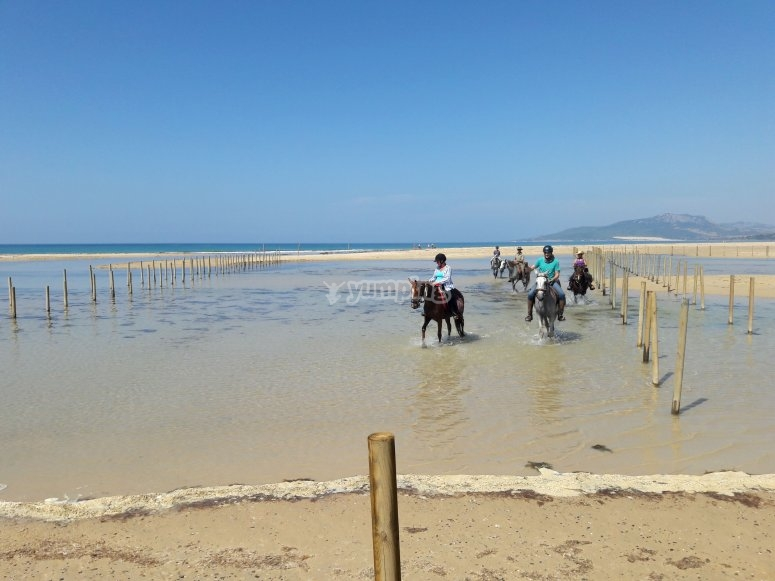 Excursion on horseback through the Strait