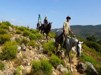 Horseback tour in Los Alcornocales & Estrecho 2h