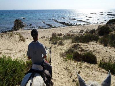 Horseback route beaches of Cádiz and hotel 3 days