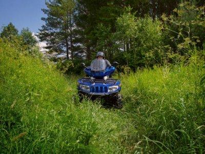 四轮摩托穿越阿拉贡比利牛斯山脉的森林