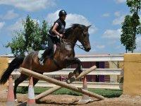 Clase de equitacion