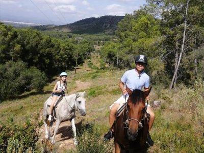 Ruta a caballo al Parque del Turia con alojamiento