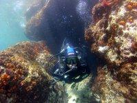 淹没的海蟹