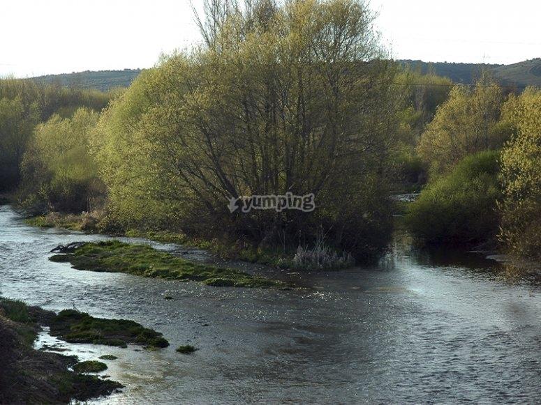 奥马尼亚河和卢纳河的结合
