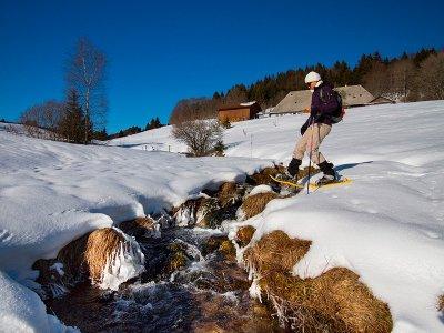 Trekandorra Raquetas de Nieve