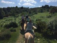 A caballo enccontrando un banco en el camino