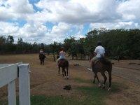 Camina a lomos de un caballo