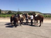 Equinos descansando durante la ruta