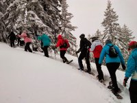 Raquetas de nieve en grupo en Andorra