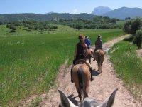 Foto desde el caballo