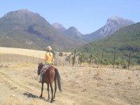 骑马的Sierra de Grazalema背景照片