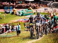 Competicion en bicicleta