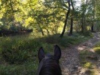 Paseando a caballo por la ribera