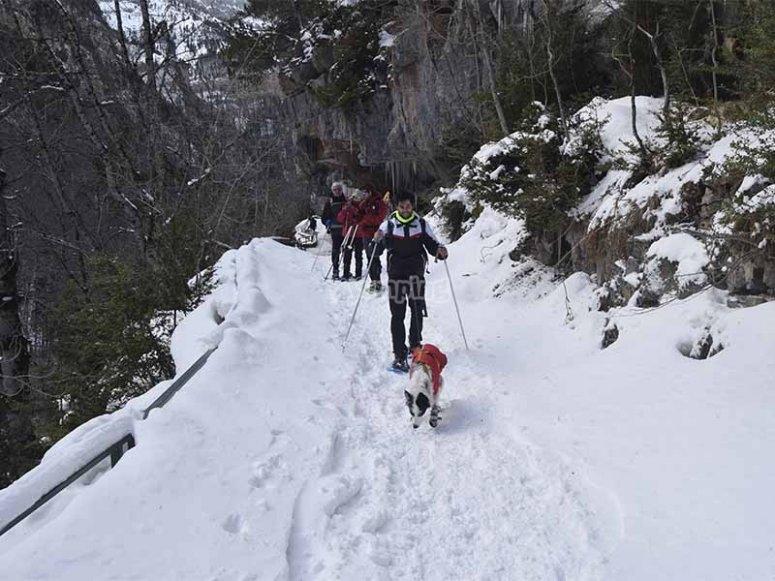 Disfrutando con toda la familia de un paseo en raquetas de nieve