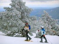 埃斯波特(Espot)午餐的雪鞋行走路线3小时