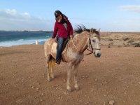 Subida en el caballo en Fuerteventura