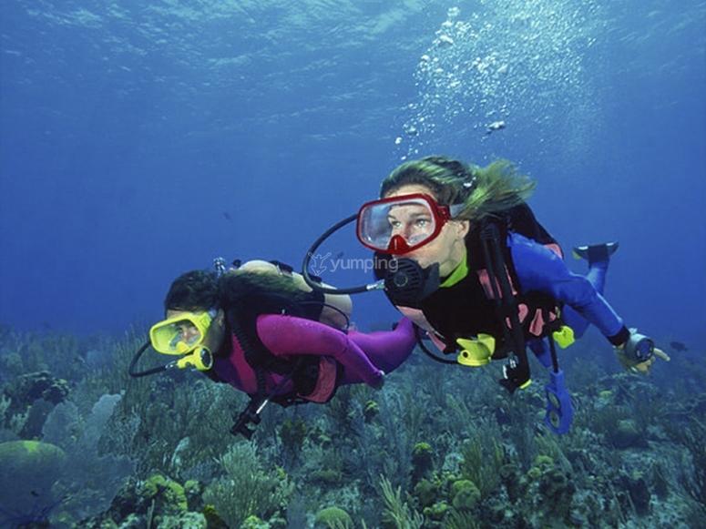 Godersi una giornata di immersioni