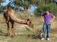 享受野生动物