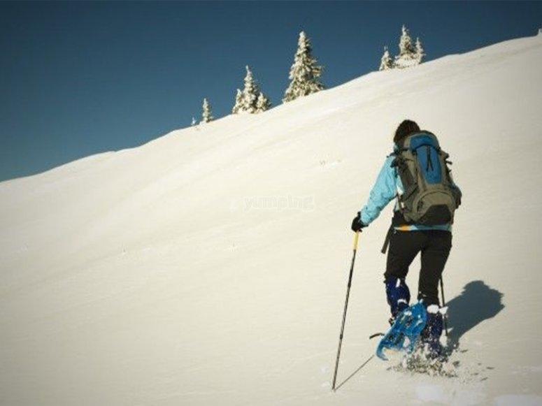 在内华达山脉穿雪靴的路线