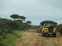 Recorrido por la naturaleza de Cádiz