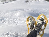 Disfrutando de un día de raquetas de nieve