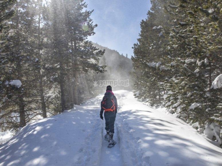 Raquetas de nieve en el valle de Ordesa