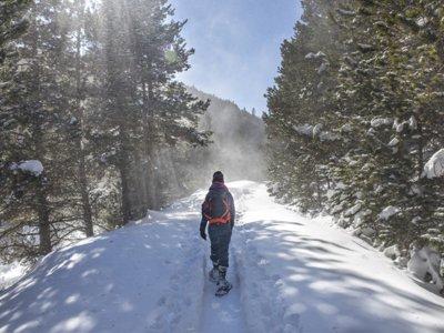 比尔萨(Pielsa)的皮内塔谷(Pineta Valley)的雪鞋行走路线