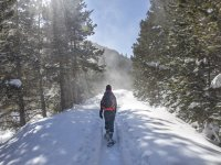 Snowshoeing route in Pineta Valley in Bielsa