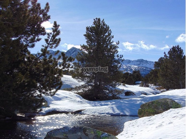 Valle de Moreto nevado