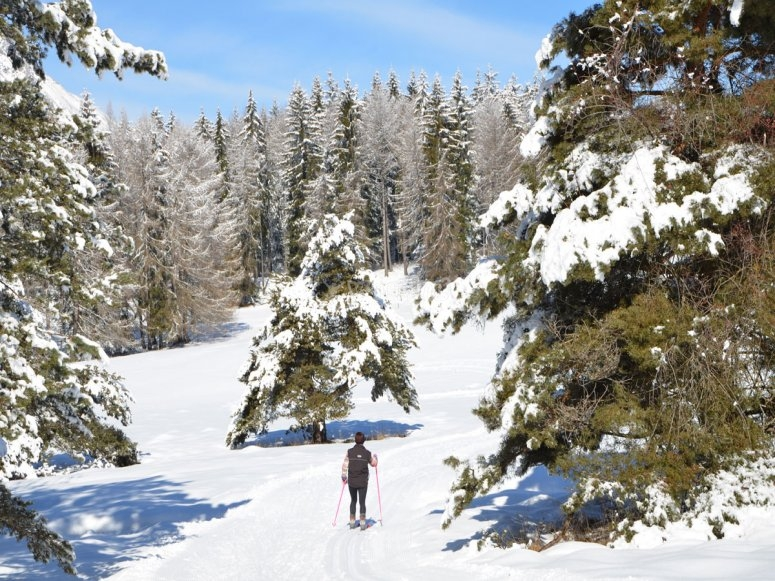 Moreto valley skiing