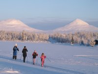 Family practicing cross-country skiing