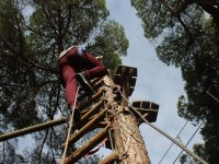 Climbing the tree in La Juliana