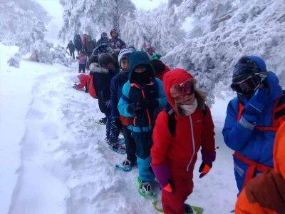 恩坎普(Encamp)的雪鞋行走和成年猛击路线