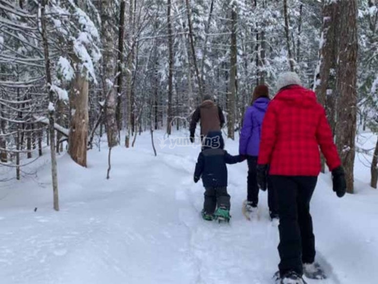 Paseo con raquetas de nieve en el bosque de Moretó
