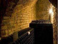interno di una cantina con bottiglie di vino.jpg