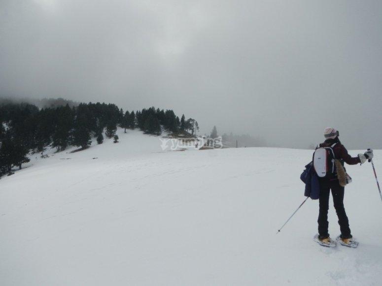 女子雪鞋行走路线
