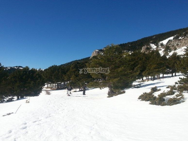 Coll de Pal ruta raquetas de nieve